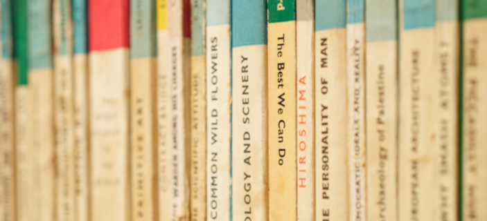Photo (by Karim Ghantous via Unsplash) of classic books, with a focus on 'The Best We Can Do' - to encourage children to read